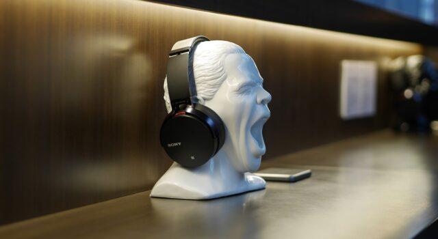 BestBuy Sony Headphones